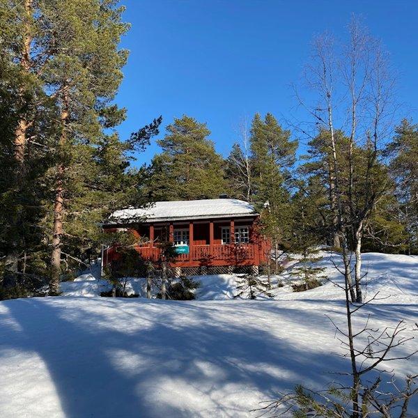 Damtjern hyttefelt