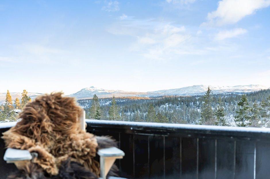 Flott utsikt fra terrassen.